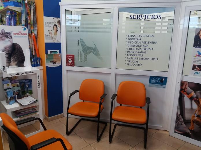Productos y servicios: Servicios de Clínica Veterinaria Gran Tarajal