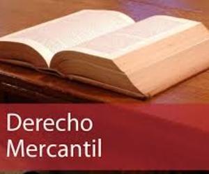 Derecho Mercantil y de la empresa