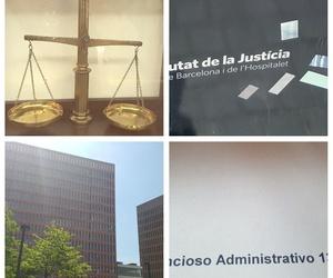 Juicios. Declaraciones.Actividad judicial