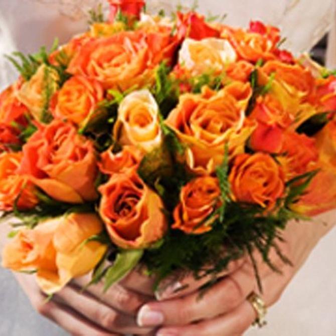 Las flores te cambian por dentro