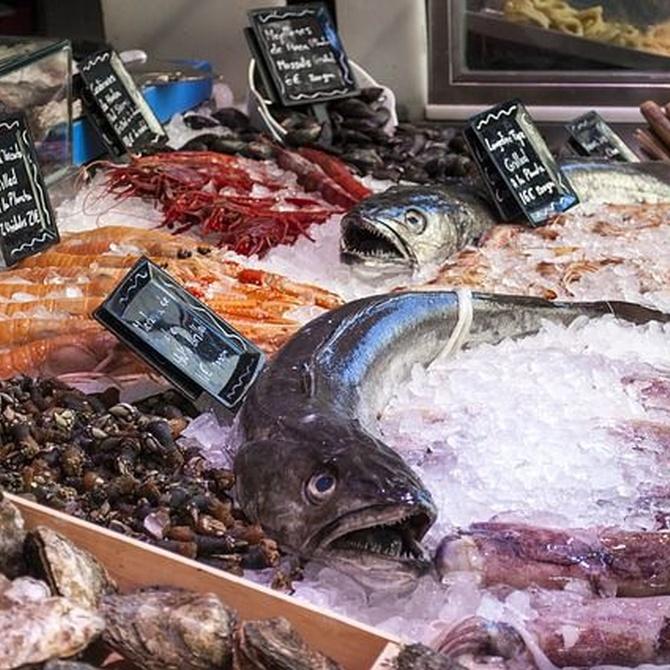 Versatilidad de los pescados blancos en la cocina