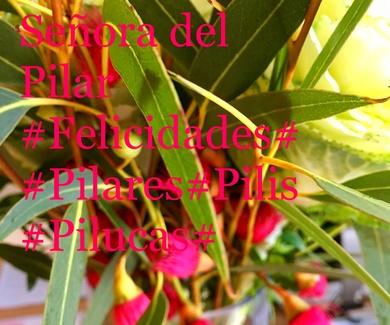 *12 de Octubre * Ntra. Sra. del Pilar.