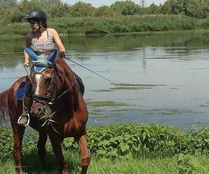 Cosmética y cuidado para los caballos