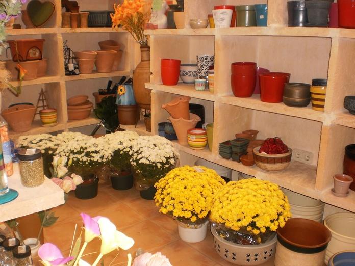 Anthuroum: Productos y servicios de Floristeria rosella