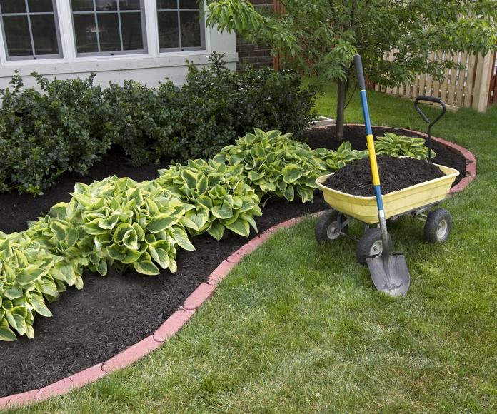 Mantenimiento de jardines: Servicios de Multiservicios Magán