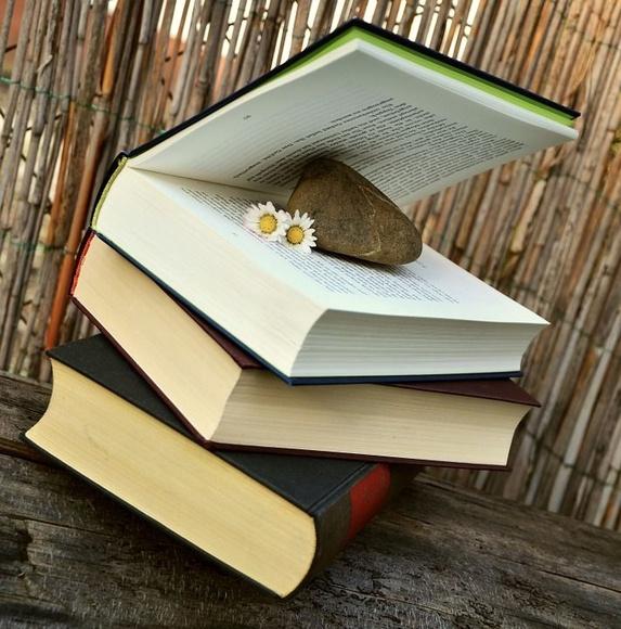 Línea colaborativa en el desarrollo de proyectos literarios