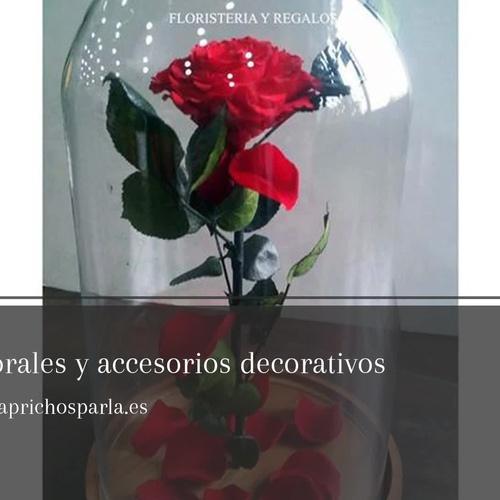 Flores a domicilio en Parla | Caprichos
