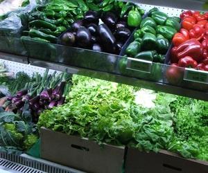 Venta de verduras ecológicas en A Coruña