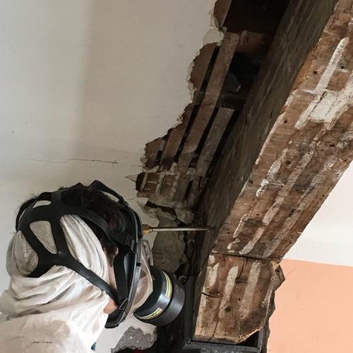 Tratamiento estructura madera contra carcoma en Bilbao