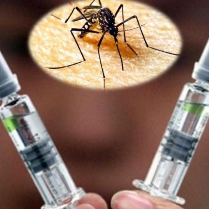 La amenaza a nivel mundial del Zika
