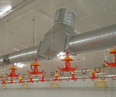 Generadores de Aire Caliente de Biomasa para explotaciones ganaderas