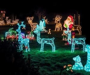 Cómo decorar tu jardín en Navidad