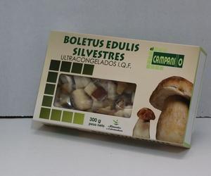 Conservas de Boletus Edulis Silvestres en Cáceres