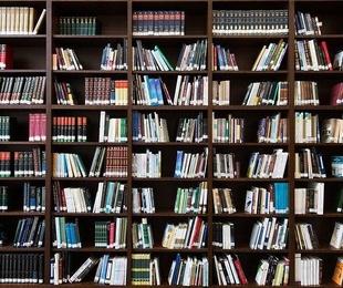 Autores importantes en la economía de las organizaciones