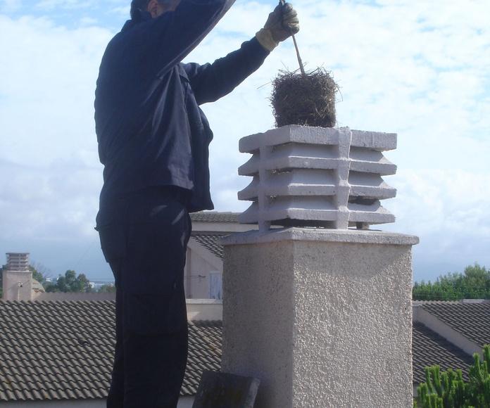 Extracción de nido.: Servicios de limpieza de Limpiadora del Valles de 1965, S.C.P.