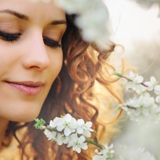 Beneficios de la jalea real fresca para tu piel