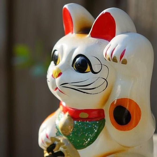 Principios clave de la decoración Feng Shui