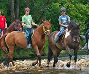 Paseos y excursiones a caballo por los alrededores de Cangas de Onís (Asturias)