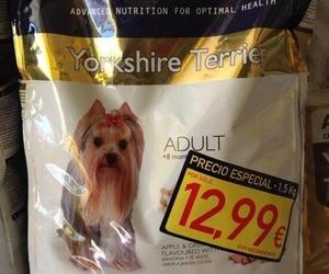 Bolsa Yorkshire adulto