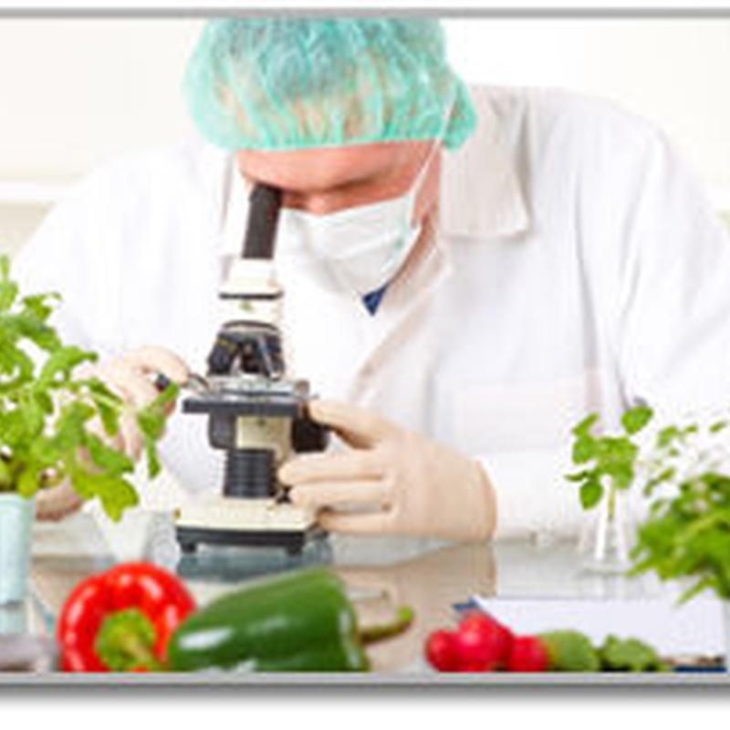 Análisis de las Propiedades de Los Alimentos Y Bebidas: Servicios of Asial