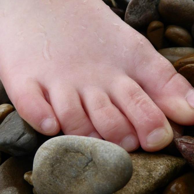 Los dedos menores