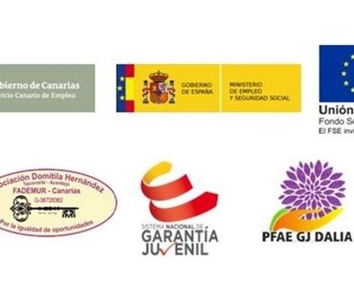 PFAE GJ DALIA: Proyectos y Servicios de Asociación Domitila