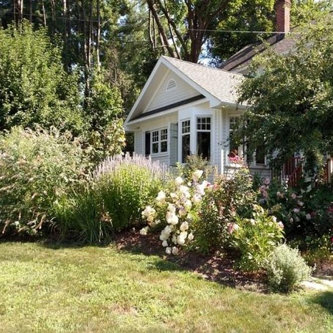 Consejos para cuidar tu jardín en primavera