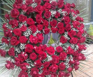 Las flores transmiten sentimientos