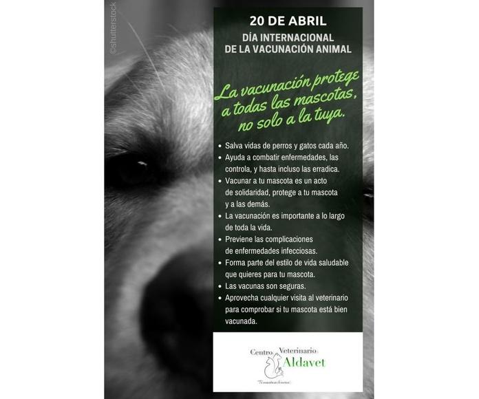 20 de abril es Dia Vacunacion Animal