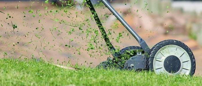 Mantenimiento de jardines : Trabajos  de Jardiner Zamora