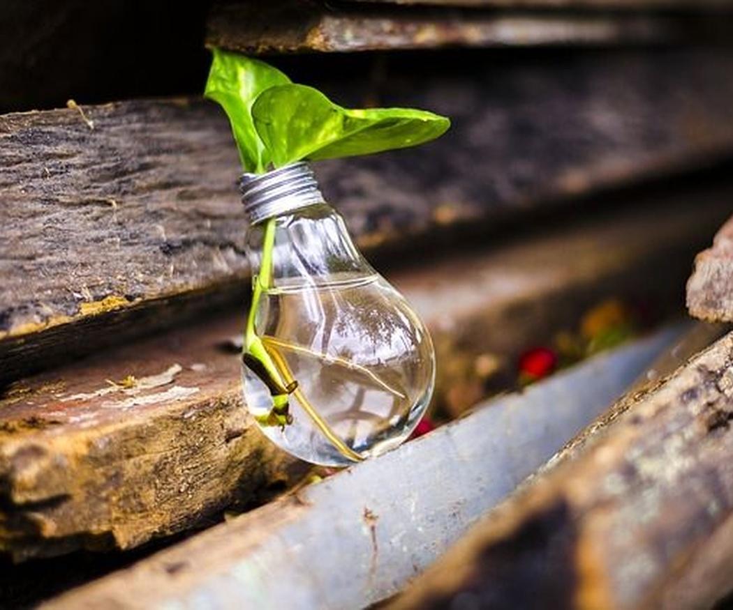 Conoce las ventajas de ahorrar bombillas