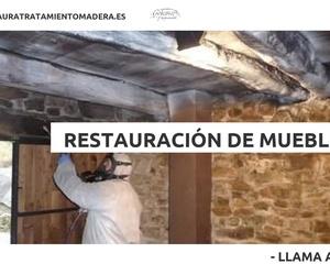 Tratamiento de la madera en Asturias: Anobium Restauración