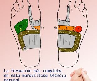 CURSO DE REFLEXOLOGIA