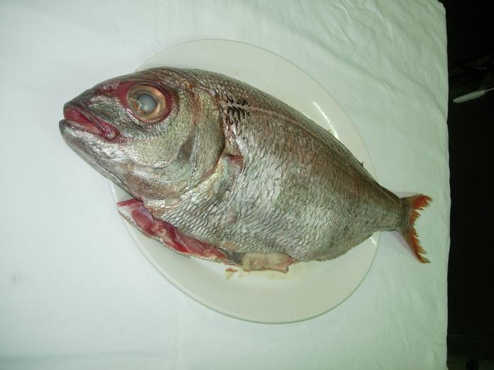 Pescados: Carta y menús de Don Ángelo