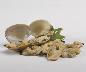 Conservas de almejas