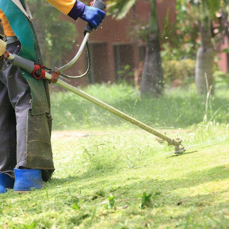 Desbroce y limpieza de parcelas: Servicios de Indigo Jardines