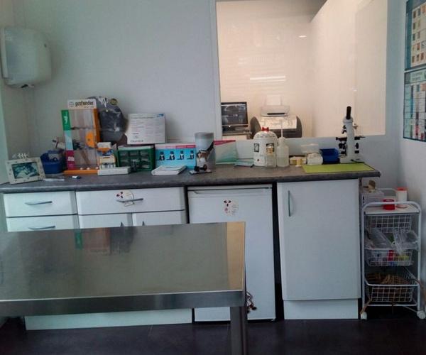 Servicios veterinarios en Madrid