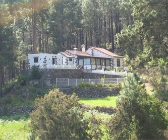 La Orotava, El Mayorazgo - Ref.- G0847: Inmuebles de Inmobiliaria JP
