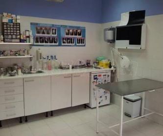 Vacunaciones: Tratamientos y servicios de Clínica Veterinaria Camarma