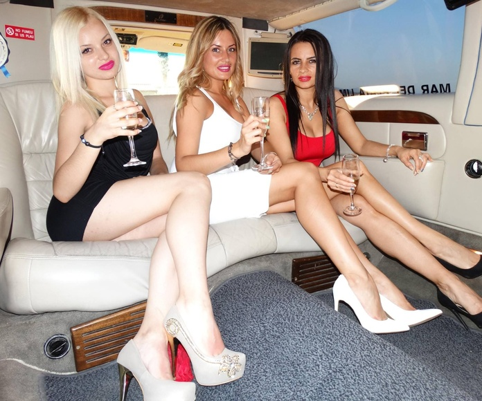 Conciertos: Servicios de Mar del Plata Limousines