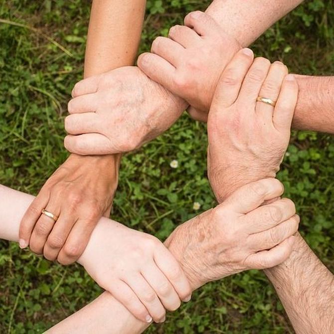 Los tipos de seguros para la protección familiar