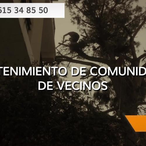 Diseño y mantenimiento de jardines en Cádiz | Interjardín