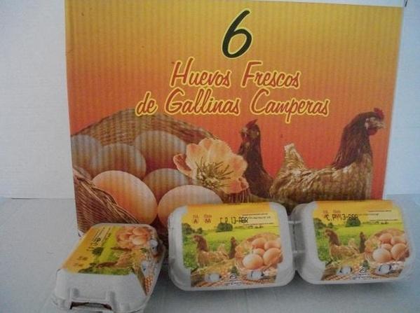 Huevos Camperos: Productos de Huevos Cañavate