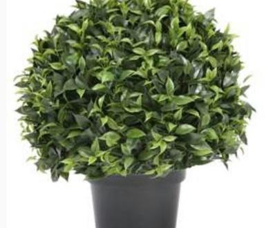 Ventajas de Nuestras Plantas Artificales