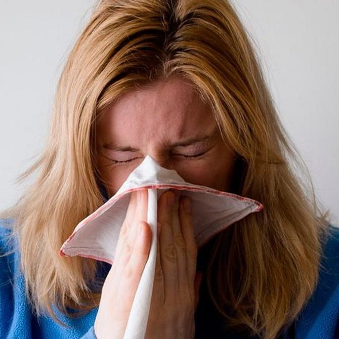 La humedad puede poner en riesgo tu salud