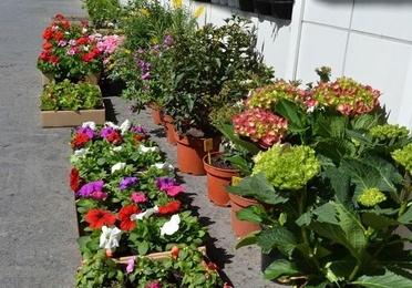 Venta de materiales para jardinería