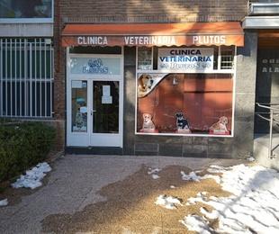 La Clinica Veterinaria Plutos esta totalmente operativa tras el paso de la Gran Nevada que ha caído sobre Madrid