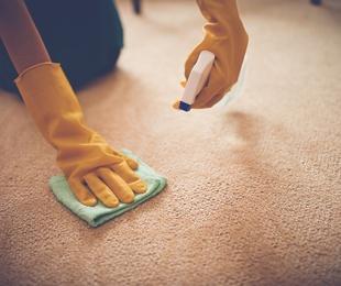 Servicio gratuito a domicilio de alfombras