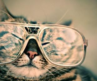 Últimos avances en terapéutica ocular