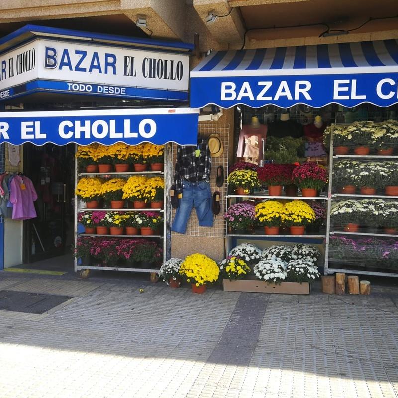 Campaña de Los Santos: Servicios de Bazar el chollo